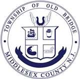 Old Bridge Ice Arena logo