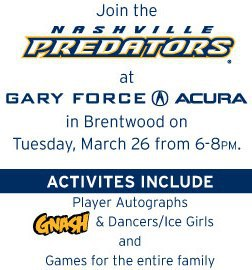 Gary Force Acura on Gary Force Acura Helmets   Hat Tricks Contest   Nashville Predators