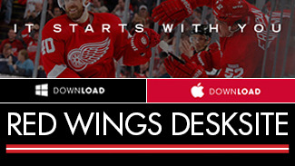 Red Wings DeskSite