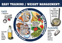 Easy Training / Weight Management